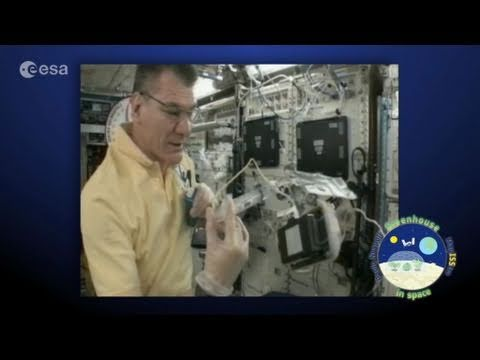 Greenhouse in Space - Paolo Nespoli launching the project at ISS