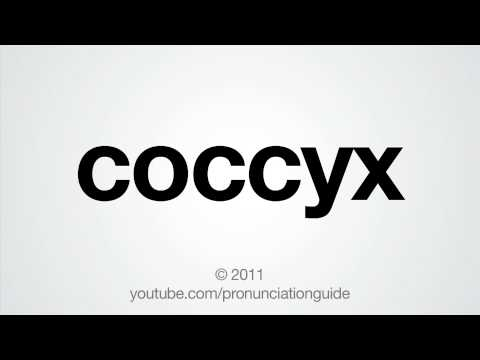 How To Pronounce Coccyx