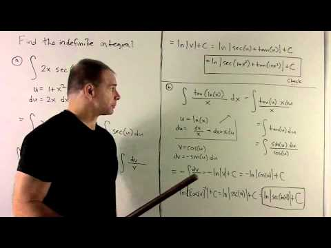 Trig Antiderivatives involving 1/x