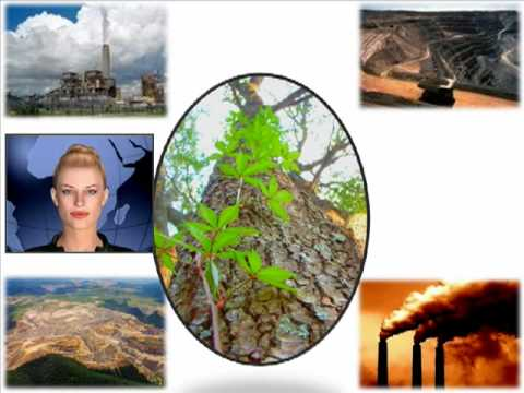 Avatar Project 3: Environmental Footprint