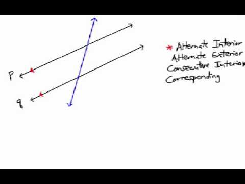 How to Find Alternate Interior/Exterior Angles