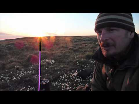 NATURE | Bears of the Last Frontier | Video Diary: In Search of Caribou | PBS