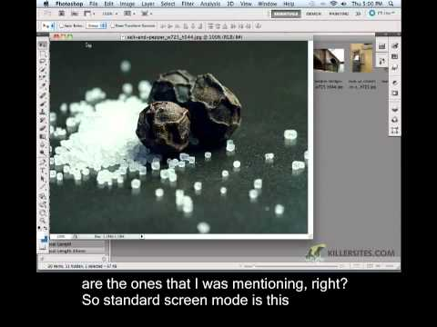 Photoshop CS5 Closed Captioned - Zoom Tool