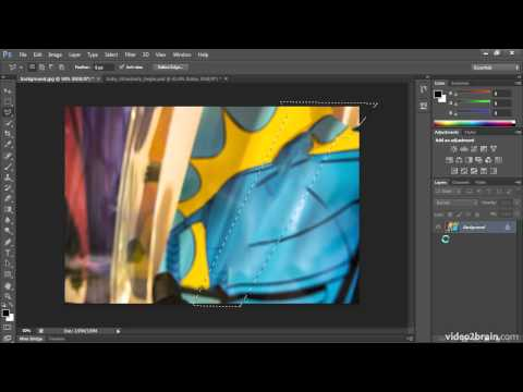 Selections: The Lasso and Polygonal Lasso Tools
