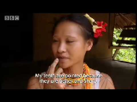 Mentawai tribe: Tattoos - Tribal Wives - BBC