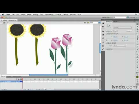 How to edit Flash symbols and instances | lynda.com tutorial