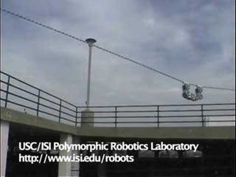 Modular robot's wriggles show greater flexibility 1