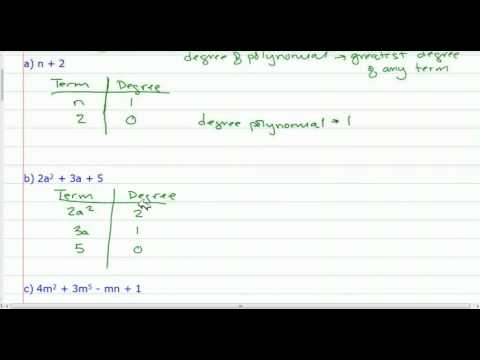 Polynomials - Classification based on Degree