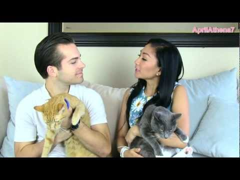 ✿ FURRY FRIEND TAG with my husband! ✿ Sunrise, Charlie, Bobby! CATS!