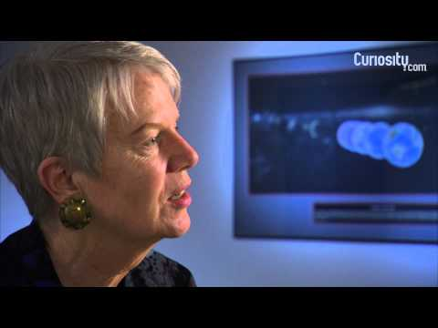 Jill Tarter: On Citizen Scientists