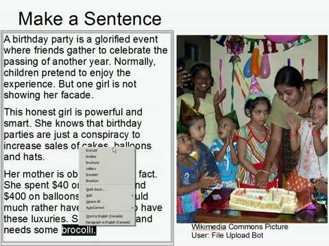 Make A Sentence Double Trouble 16: Birthday Party