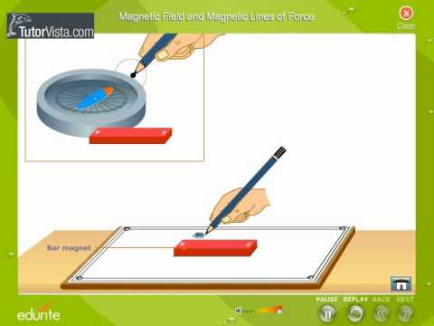 Mapping And Magnetic lines Of Force