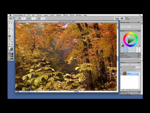 Corel Painter: Using the Photo tools | lynda.com tutorial