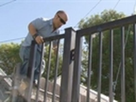 Pit Boss- Scaling a Fence to Save a Pit Bull