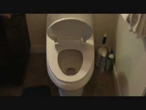 How to install a self-closing toilet seat
