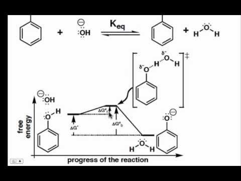 The Proton Transfer Step on a Reaction Coordinate Diagram