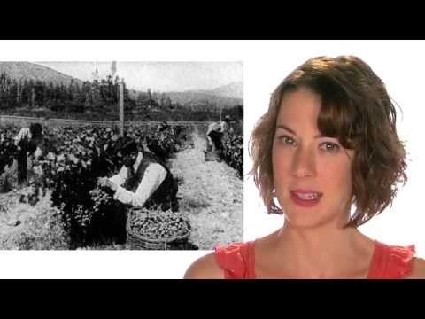 "The Grapes of Wrath WRAP-UP! -- Steinbeck's ""Grapes of Wrath"" ... from 60second Recap®"