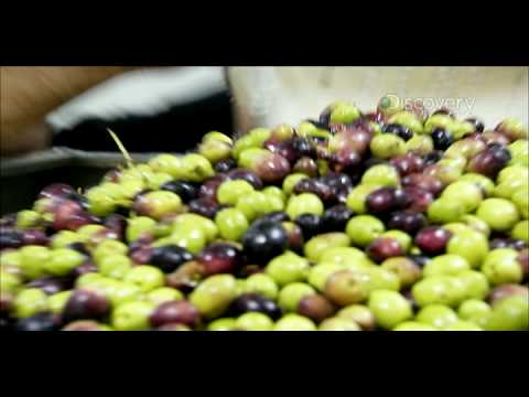 Dirty Jobs - Olive Oil Presser