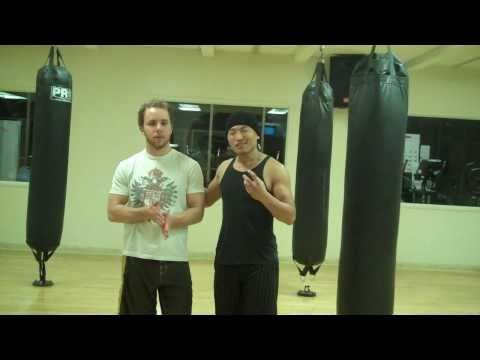 Wing Chun - Tan Sau Pressure Test (part 1)