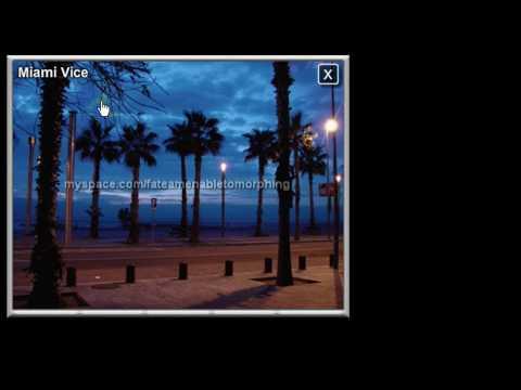 XML Dynamic Loop Photo Gallery - Free Flash as3 CS3 Tutorial Source File