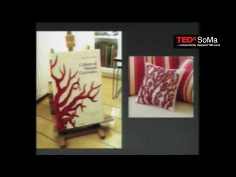 TEDxSoMa - David Pescovitz - The World as a Wunderkammer