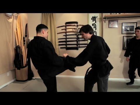 Kedikudaki (Destroying a Kick) | Ninjutsu Techniques