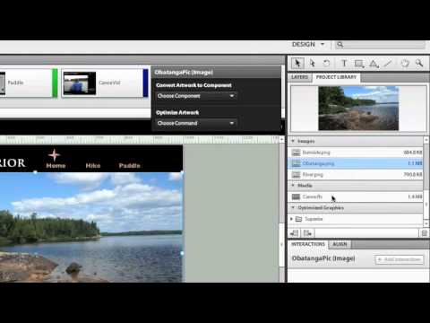 Flash Catalyst CS5.5 - Using the Library Panel