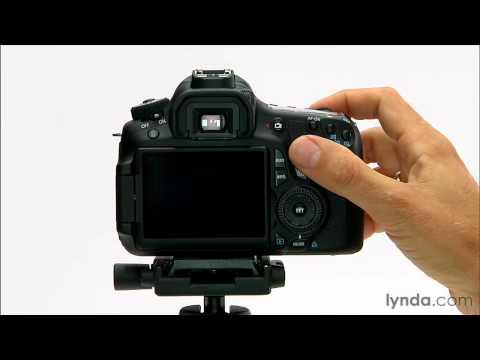 Canon 60D tutorial: How to use the autofocus | lynda.com