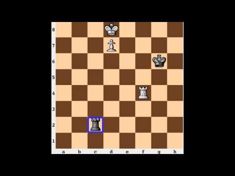Chess Endgame: Lucena Position