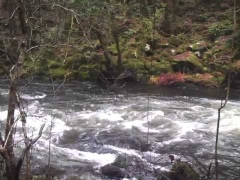 Rapids- Interesting Words - ESL British English Pronunciation