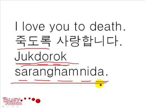 Korean Travel Phrases #8 - I love you.