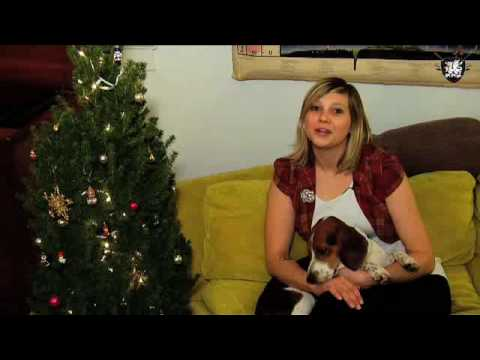 Silver Retro Christmas Tree, Decor it Yourself