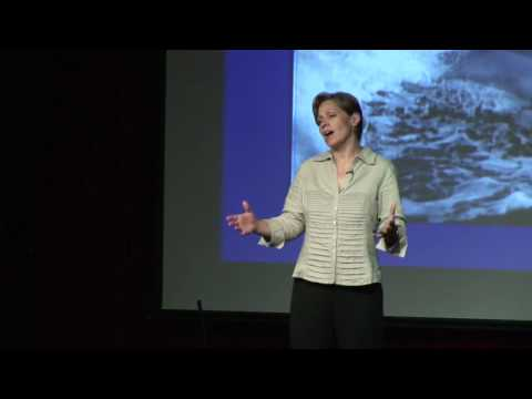 TEDxAsheville - Dee Eggers - Dolphins as Persons