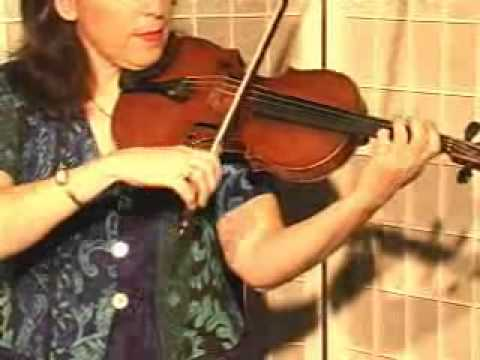 Violin Lesson - How To Play Danman's Print Library # 110