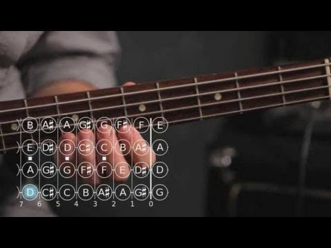 Bass Scales: How to Play the B Minor Scale