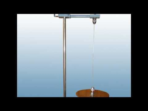 Torsion Pendulum -Amrita University (Virtual Lab)