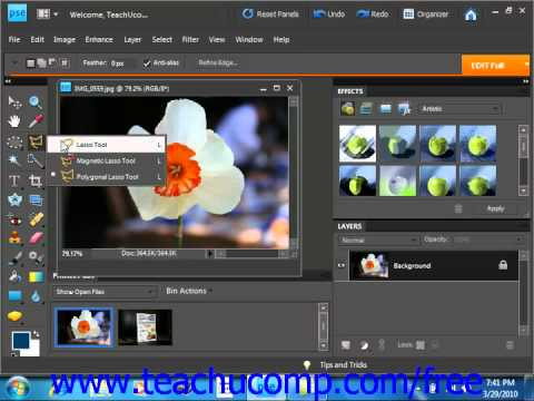 Photoshop Elements 9.0 Tutorial The Lasso Tools Adobe Training Lesson 8.4