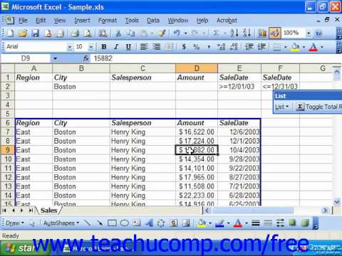 Excel 2003 Tutorial Copying Filter Results to a New Location Microsoft Training Lesson 28.4
