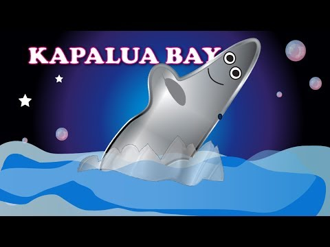DidiPop Kids' Music: Kapalua Bay - learn about Maui (Teach your kids with music)