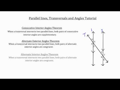 Parallel Lines, Transversals and Angles