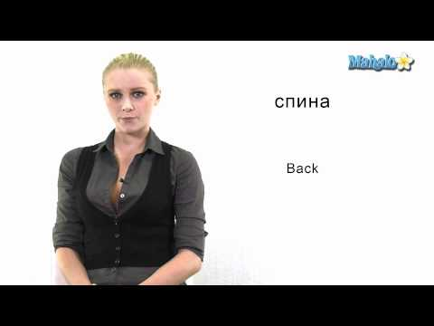 "How to Say ""Back"" in Russian"