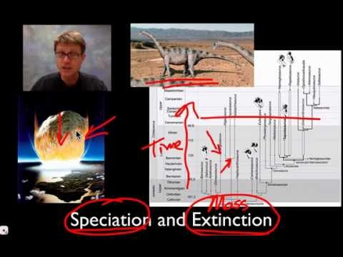Unit 2 Review - Speciation