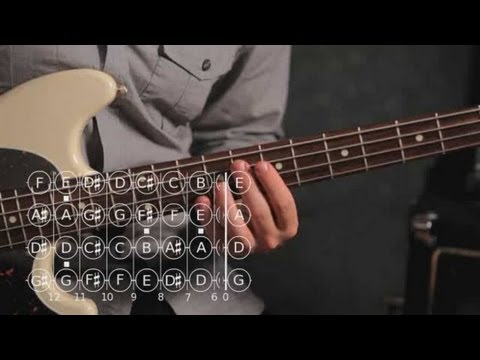 Bass Chords: How to Play an F Major Triad