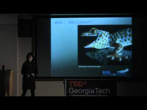 TEDxGeorgiaTech - Jeannette Yen - Biologically Inspired Design For An Interdisciplinary Education