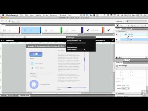 InfiniteSkills Tutorial | Flash Catalyst CS5.5 | Check Boxes and Radio Buttons