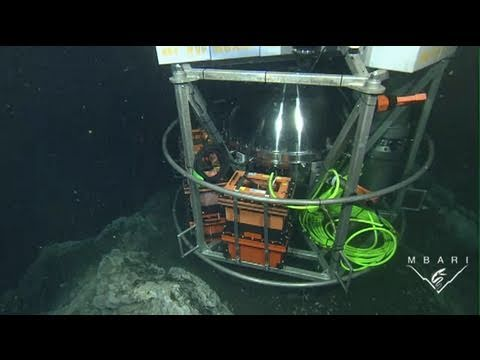 Robotic laboratory monitors bacteria at undersea mound in Southern California