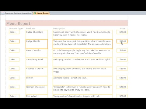 Access 2010: Formatting Reports