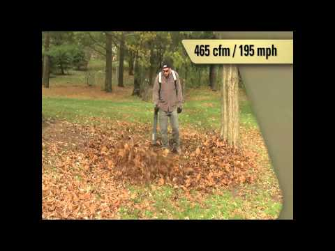 Echo PB-500 Backpack Leaf Blower
