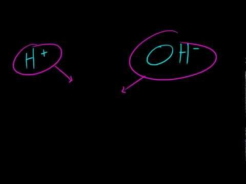 Biology Lecture - 5 - Why are Acids and Bases Important?