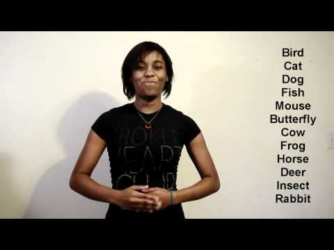 Sign Language 101: Animals